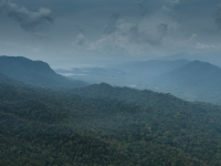 Aussicht auf den Dschungel auf Lankawi