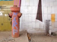 Bunter Hydrant