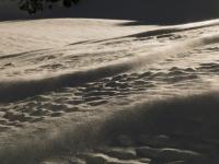Wind bläst Schneerippeln