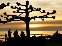 Silhouetten in Friedrichshafen